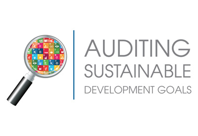 Auditing the Sustainable Development Goals