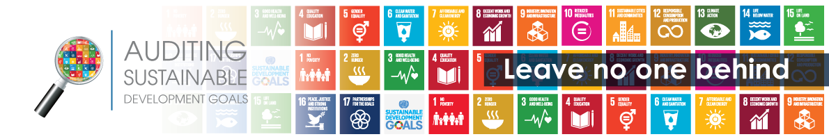 Auditing the SDGs