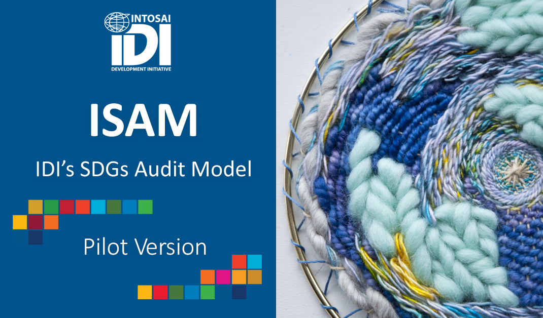 IDI's SDG Audit Model (ISAM)