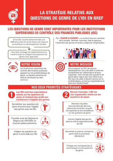 IDI Gender Strategy Infographic -French